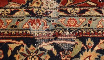 Oriental Rug Moth Proofing