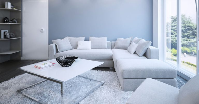 Living Room Shag Carpet