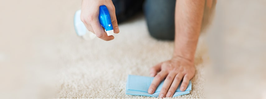 Carpet Stain Cleaning Small
